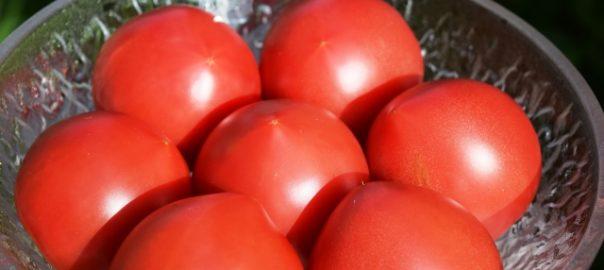 日本の防衛 【ユニクロは政治的中立】カゴメ、新疆産トマトの使用中止へ